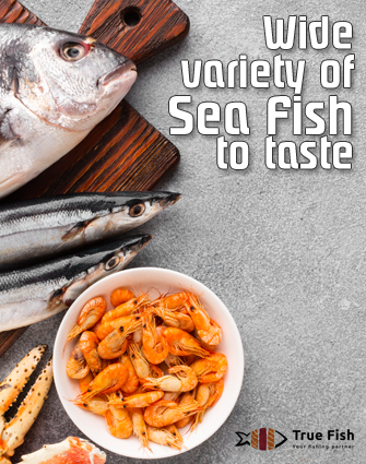 True fish traders - Buy Wide variety of Sea Fish in Bangalore
